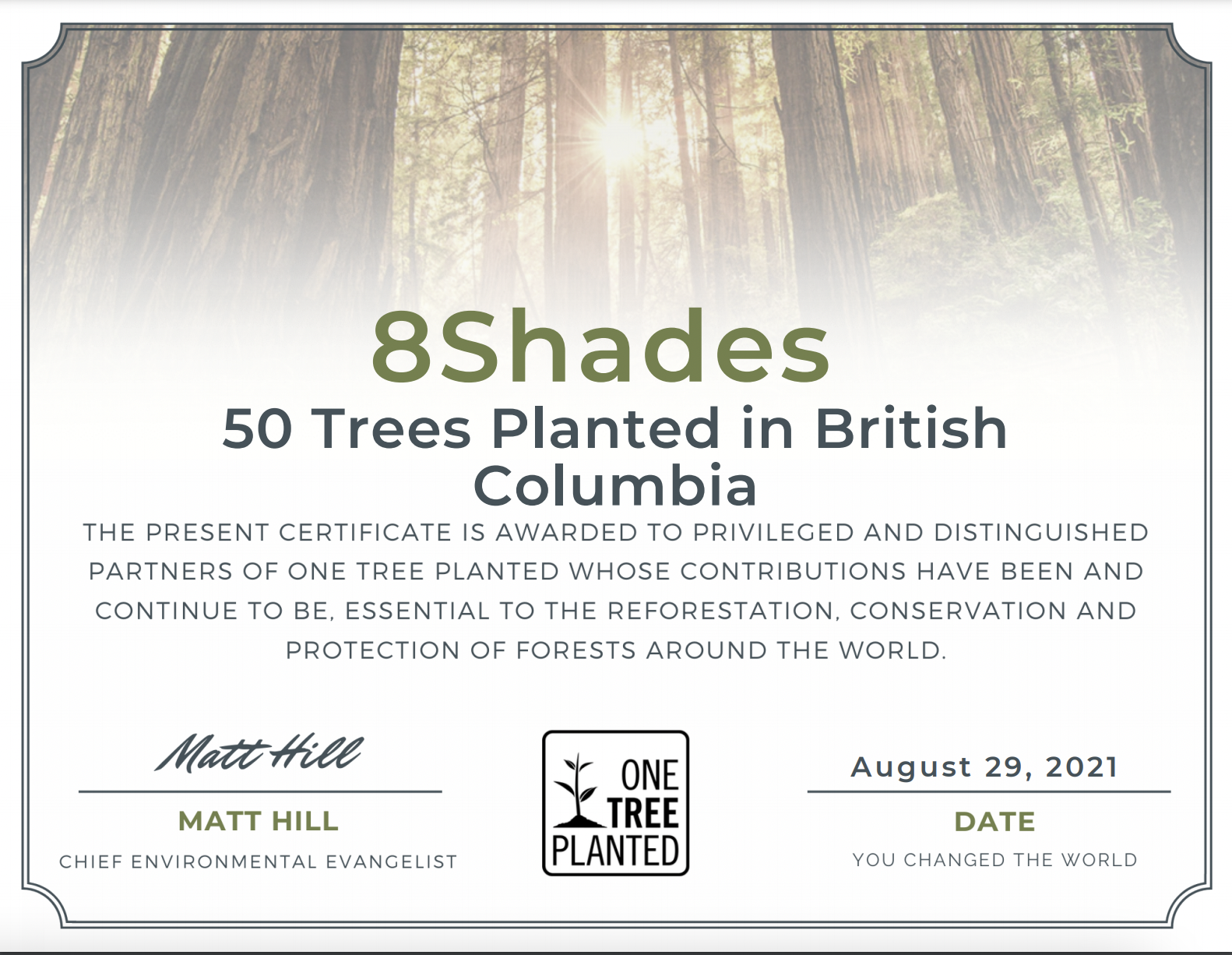 certificate from one tree planted