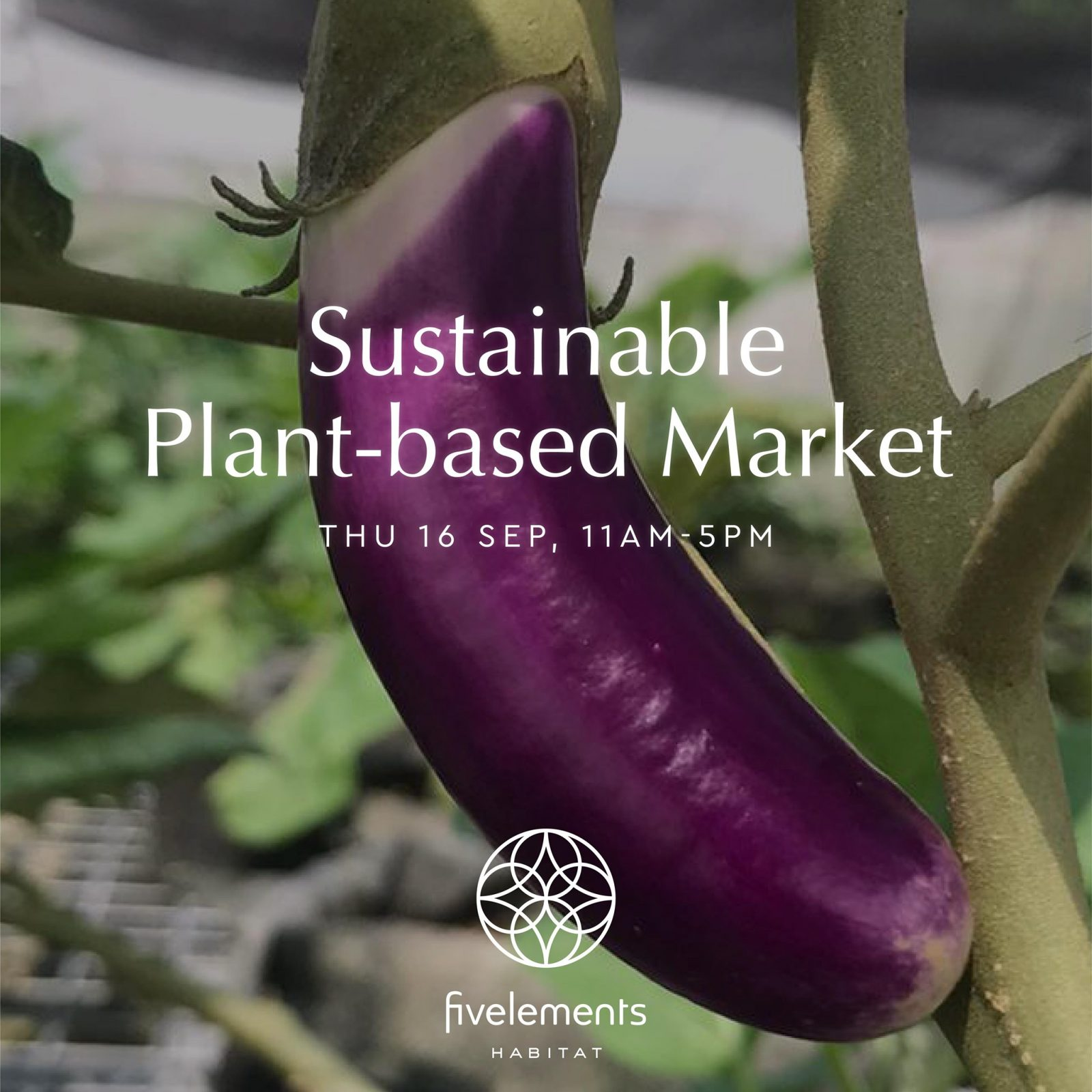 sustainable plant based market at fivelements